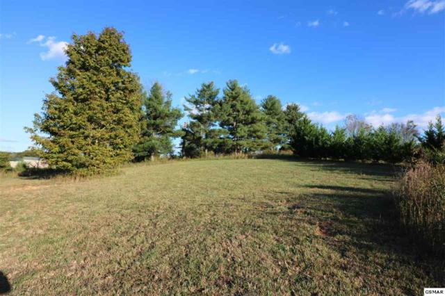 Lot 32 Sullivan Pointe, Dandridge, TN 37725 (#212744) :: Colonial Real Estate