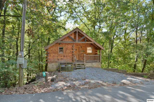 "1732 Silver Poplar Ln ""Beary Cozy"", Sevierville, TN 37876 (#212746) :: Colonial Real Estate"