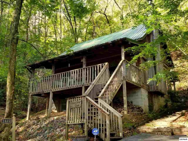"2612 Black Bear Ln ""Black Bear Cov, Sevierville, TN 37876 (#212774) :: Colonial Real Estate"