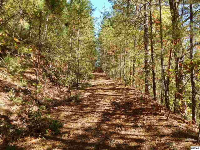 Lot 18 Hatcher Mtn Rd, Sevierville, TN 37862 (#212816) :: Colonial Real Estate