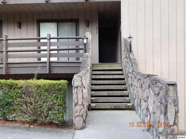 1081 Cove Rd U824 3rd Bldg Main L, Sevierville, TN 37876 (#212817) :: The Terrell Team