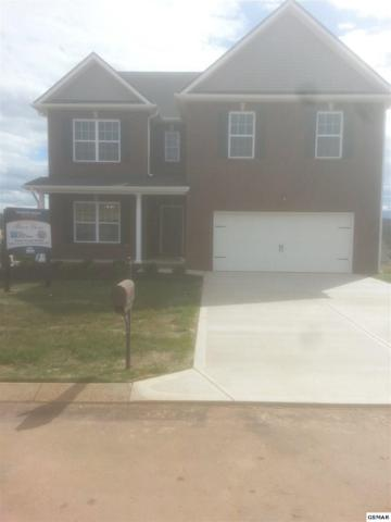 2815 Southwinds Circle, Sevierville, TN 37876 (#212847) :: Colonial Real Estate