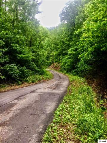 Lot 8 Eagle Pointe Way Lot 8 Eagles Po, Sevierville, TN 37876 (#212866) :: Billy Houston Group
