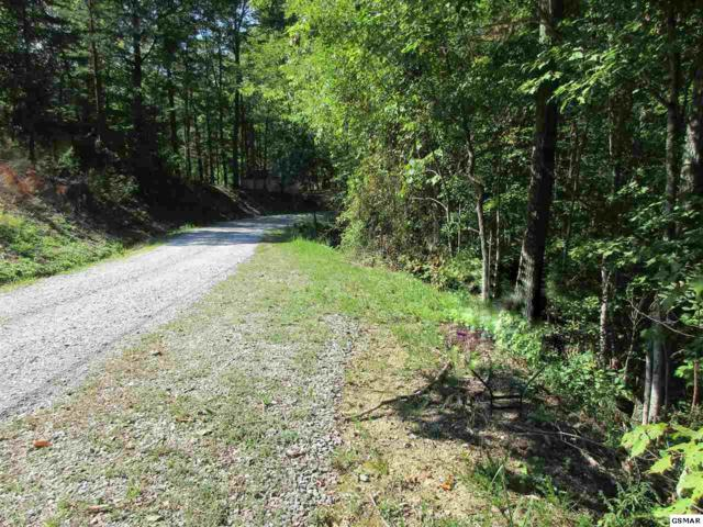 Ivy Way Lot 2, Sevierville, TN 37876 (#212877) :: Colonial Real Estate
