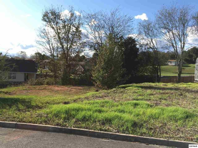 1144 Gregory Valley Dr, Sevierville, TN 37876 (#212885) :: Colonial Real Estate