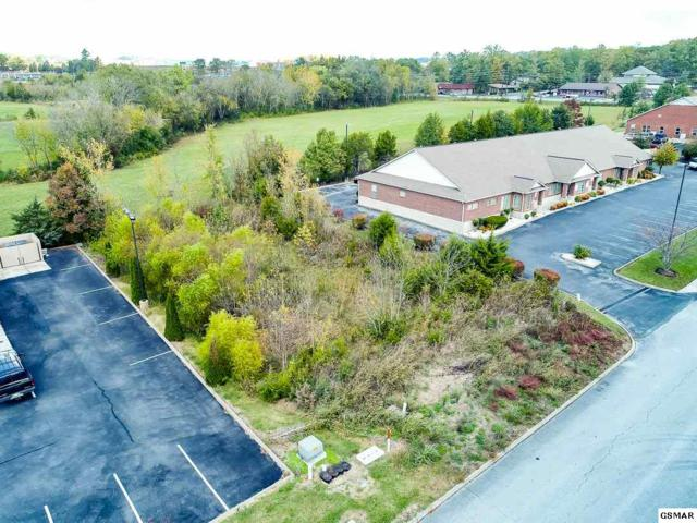 Fox Meadow Blvd, Sevierville, TN 37862 (#212896) :: Colonial Real Estate