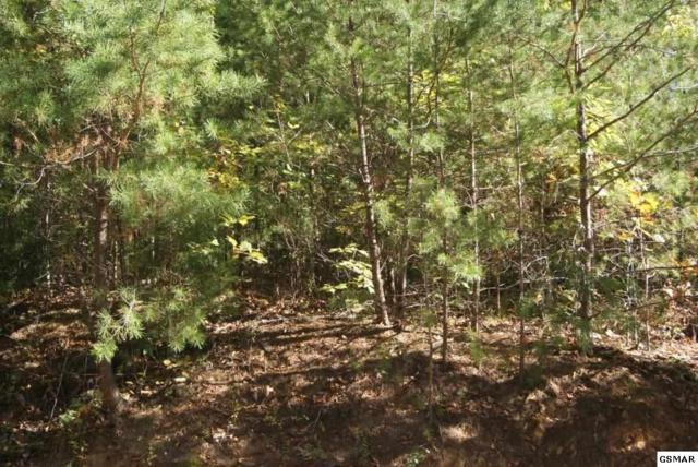 Lot#133 Wild Heron Way, Sevierville, TN 37862 (#212899) :: Billy Houston Group