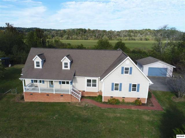 2868 Boyds Creek Hwy, Sevierville, TN 37876 (#212972) :: Colonial Real Estate