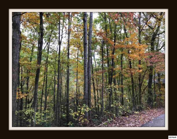 Lot 37 Whippoorwill Hill Way, Sevierville, TN 37862 (#212981) :: Billy Houston Group