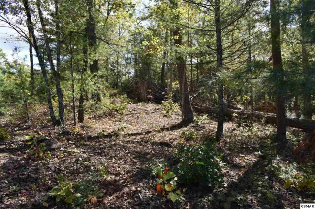 514 Percussion Court, Walland, TN 37886 (#213006) :: Billy Houston Group