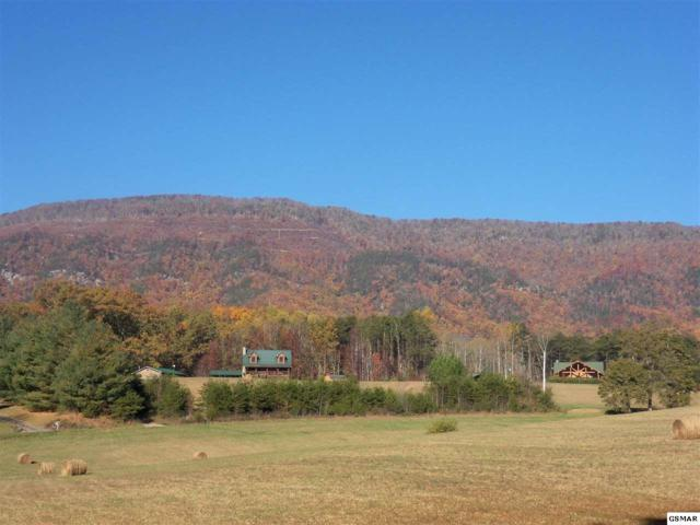 Lot 2 & 3 Mcgala Chapel Road, Cosby, TN 37722 (#213014) :: Billy Houston Group