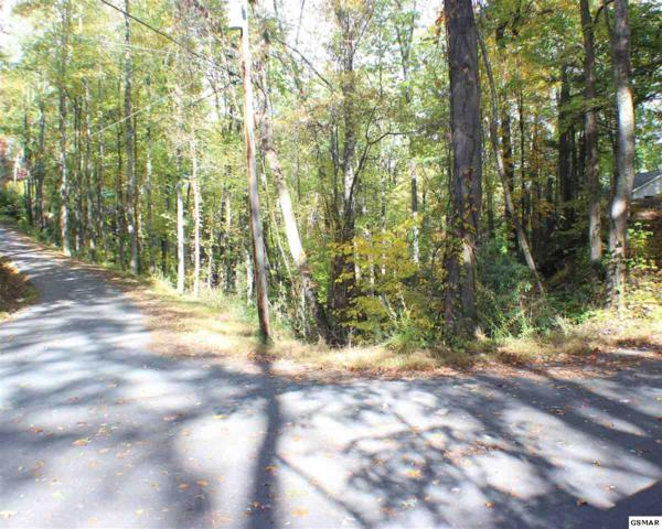 LOT 14 Stans Ct, Gatlinburg, TN 37738 (#213053) :: Billy Houston Group