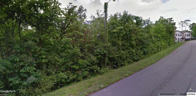 Valley Heights Drive Parcel 003.01, Pigeon Forge, TN 37863 (#213065) :: Billy Houston Group