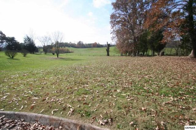 lot 2 Hatfield Ln, Seymour, TN 37865 (#213090) :: Colonial Real Estate