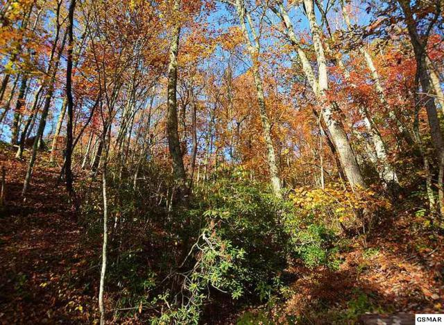 Lot 11 Lower Alpine Way, Gatlinburg, TN 37738 (#213136) :: Four Seasons Realty, Inc