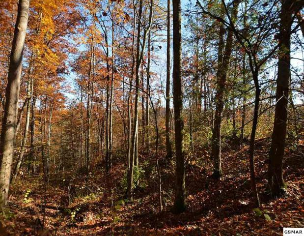 Lot 27 Sugar View Rd, Sevierville, TN 37876 (#213137) :: Billy Houston Group