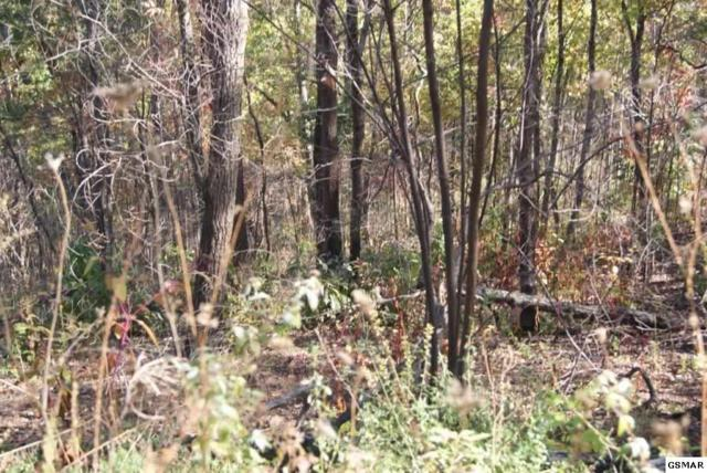 Lot#18 Lonesome Pine Way, Sevierville, TN 37862 (#213147) :: Billy Houston Group