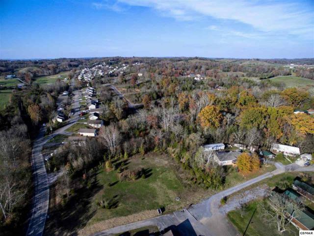 152 Lots Rock Gardens Rock Gardens Su, Sevierville, TN 37876 (#213153) :: Billy Houston Group