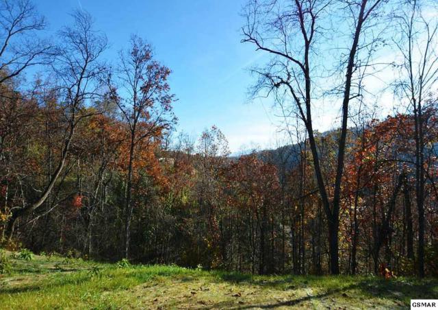335 Pinnacle Drive, Gatlinburg, TN 37738 (#213154) :: Colonial Real Estate