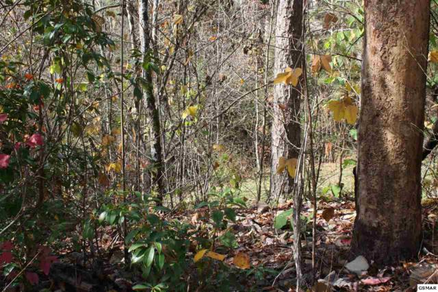 Stott Lane, Gatlinburg, TN 37738 (#213168) :: Billy Houston Group