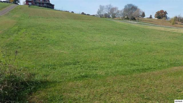 Lot 4 Highway 113, White Pine, TN 37890 (#213170) :: Colonial Real Estate