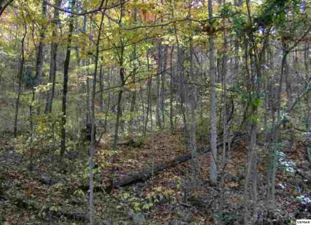 Lot 100 John Sevier Dr, Sevierville, TN 37876 (#213171) :: Billy Houston Group