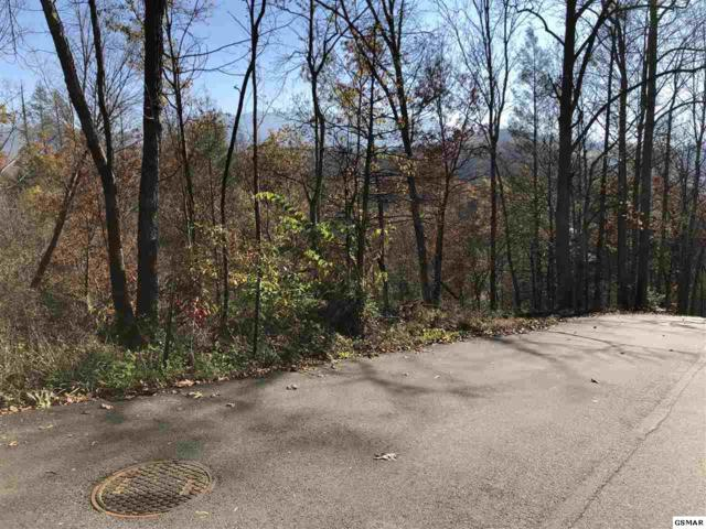 1028 Old Cartertown Rd, Gatlinburg, TN 37738 (#213173) :: Colonial Real Estate