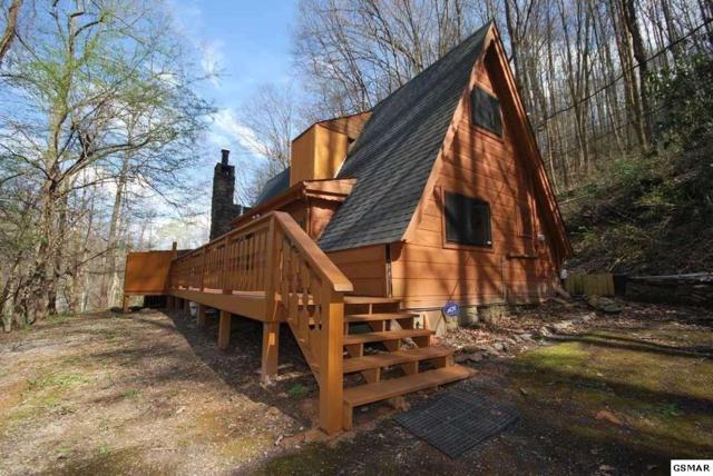 1009 Ski Mtn Road, Gatlinburg, TN 37738 (#213176) :: Colonial Real Estate