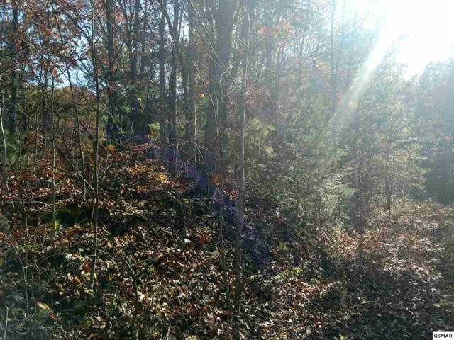 Lots 33&34 Mountain Trail Way, Sevierville, TN 37876 (#213181) :: Colonial Real Estate