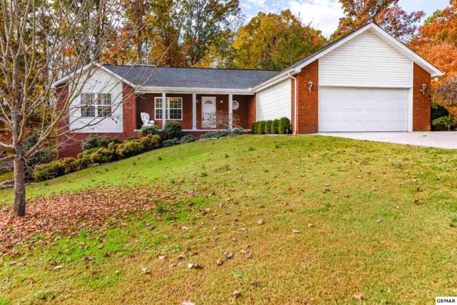 805 Reagan View Ln, Seymour, TN 37865 (#213196) :: Colonial Real Estate