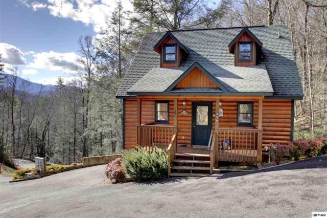 330 Cottage Pinnacle Way Bear Paws, Gatlinburg, TN 37738 (#213207) :: Colonial Real Estate