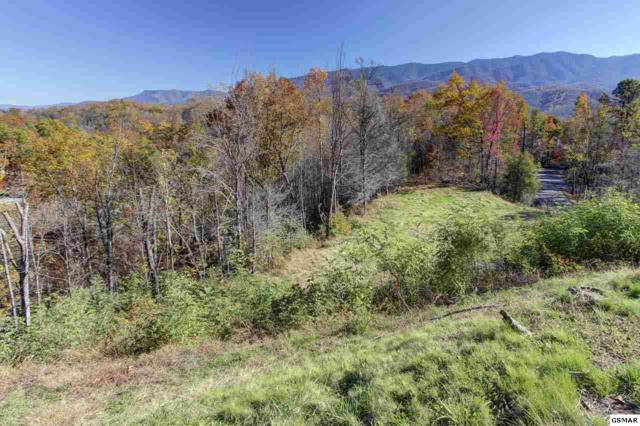 721 Upper Windsor Way, Gatlinburg, TN 37738 (#213217) :: Billy Houston Group