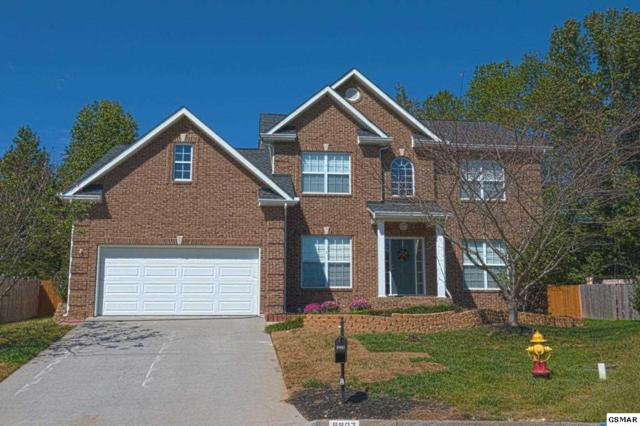 9907 Bassett Lane, Knoxville, TN 37932 (#213232) :: The Terrell Team