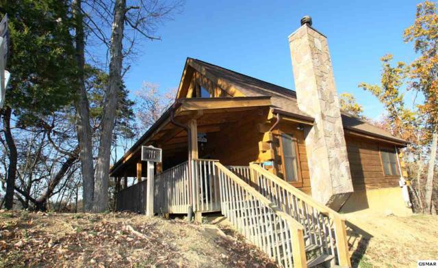 1008 Rick Way Cabin 111, Sevierville, TN 37876 (#213235) :: The Terrell Team