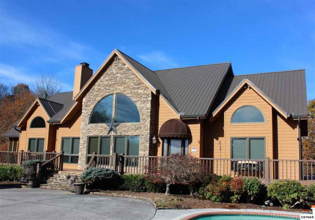 1421 Fawn Rd, Seymour, TN 37865 (#213261) :: Colonial Real Estate
