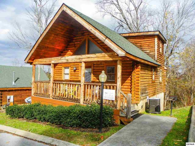 "219 Moose Ridge Way ""Nana Bear"", Pigeon Forge, TN 37863 (#213269) :: Colonial Real Estate"