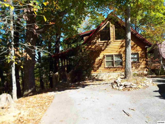 864 Dudley Drive Dreamland, Sevierville, TN 37876 (#213276) :: Colonial Real Estate