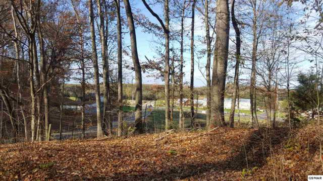 1503 Ridge Rd, Sevierville, TN 37862 (#213279) :: Colonial Real Estate
