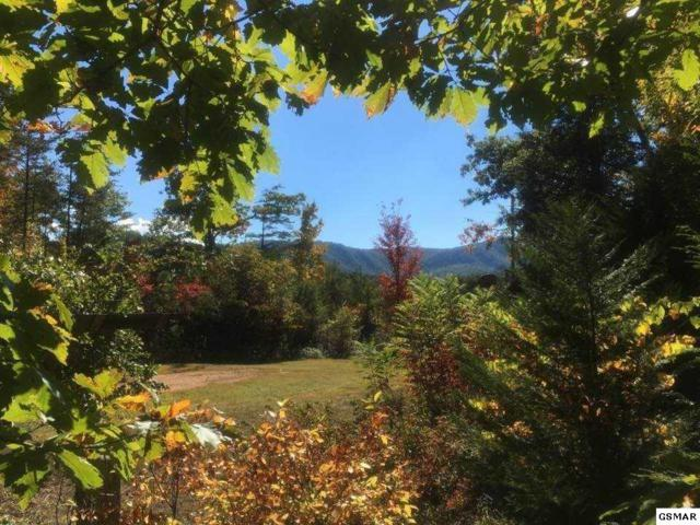 604 Pine Knob Road, Pigeon Forge, TN 37863 (#213289) :: Colonial Real Estate