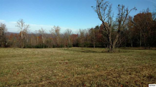 lot7 Harsell Rd, Newport, TN 37821 (#213293) :: Billy Houston Group