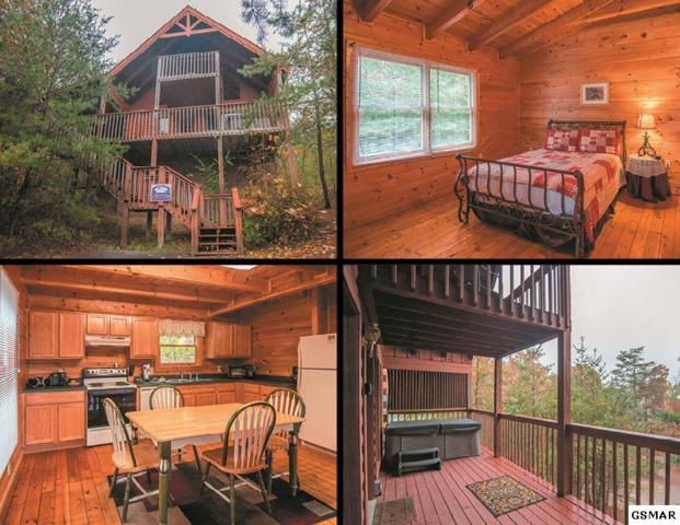 1519 Mountain Trail Way Cuddle Bear, Sevierville, TN 37876 (#213298) :: Colonial Real Estate