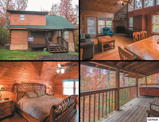 3201 Bear Country Way Cocoa Bear, Sevierville, TN 37876 (#213300) :: Colonial Real Estate