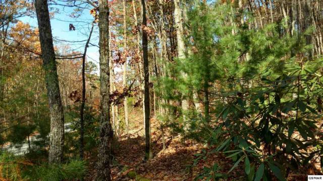 Lot 11 Critter Mtn Way, Newport, TN 37821 (#213310) :: Billy Houston Group