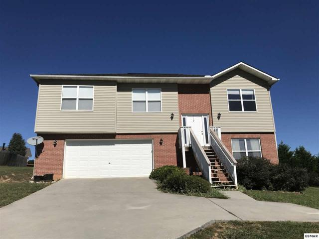 520 N Pitner Road, Seymour, TN 37865 (#213361) :: Colonial Real Estate
