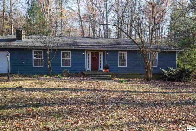 817 Chris Haven Dr N, Seymour, TN 37865 (#213363) :: Colonial Real Estate