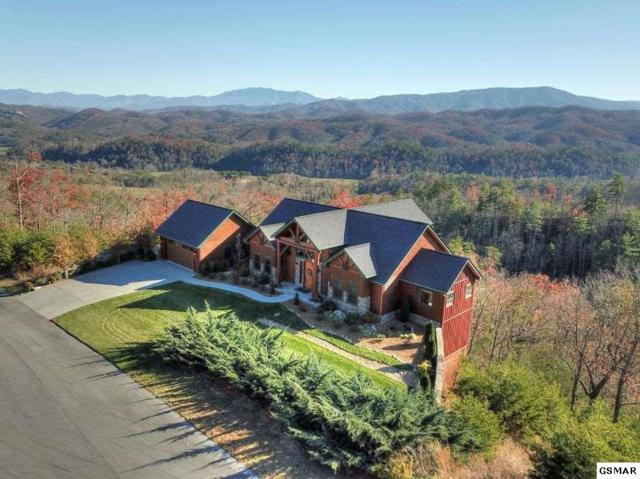 3060 Misty Bluff Trail, Sevierville, TN 37862 (#213400) :: Colonial Real Estate