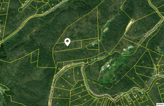 Little Cove Rd, Sevierville, TN 37862 (#213435) :: Billy Houston Group