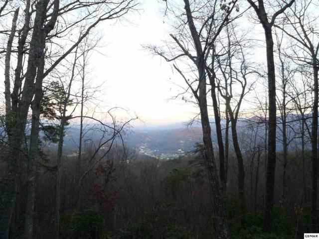 Lot Lot 0037 Zermatt Dr, Gatlinburg, TN 37738 (#213446) :: Colonial Real Estate