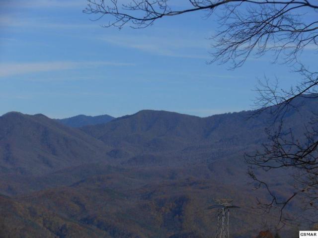 Ski View Drive Two Lots Great , Gatlinburg, TN 37738 (#213452) :: The Terrell Team