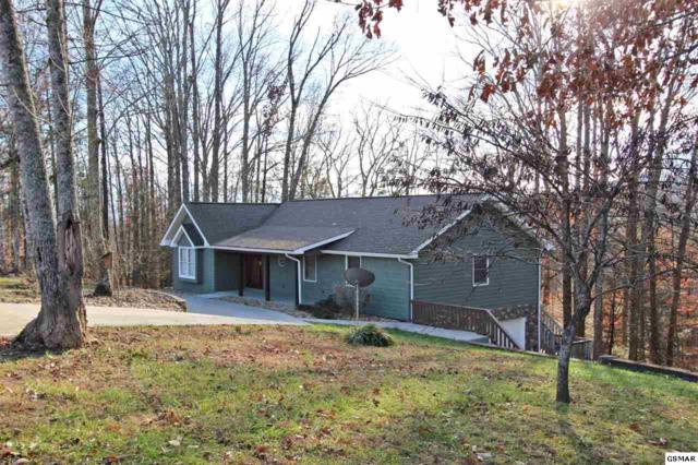 105 Ridge Runner Rd, Newport, TN 37821 (#213453) :: SMOKY's Real Estate LLC